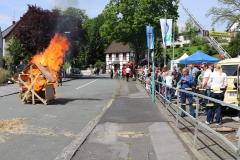 Feuerwehrfest 2017 (15)
