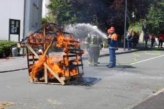 Feuerwehrfest 2017 (17)